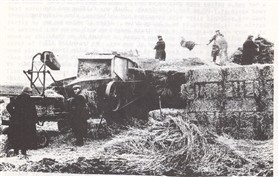 Photo: Illustrative image for the 'The Last Set of Threshing Tackle working from Orwell' page